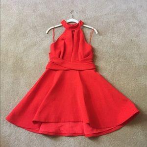 Red Cameo Skater Dress